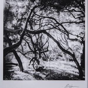 Santa Barbara Fine Art Photography