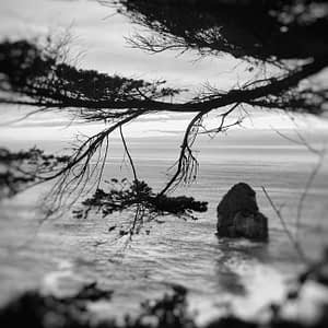 Oregon Coast photography by Oliver Tollison