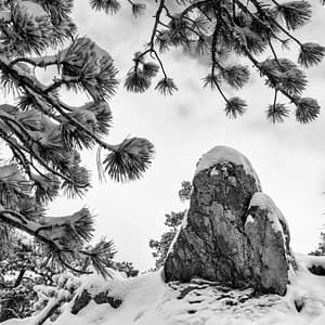 boulder in the snow
